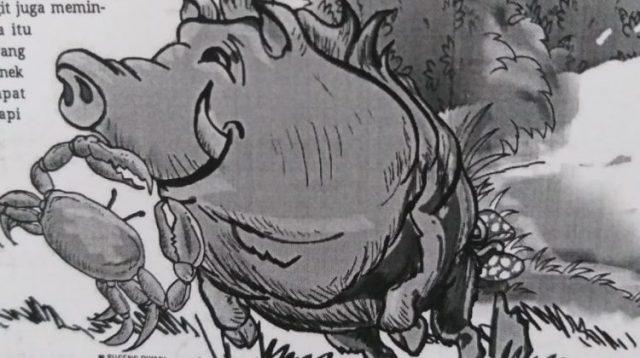 Ilustrasi Cerita Anak Babi hutan yang jahat. LAMPUNGPOT/SUGENG RIYADI