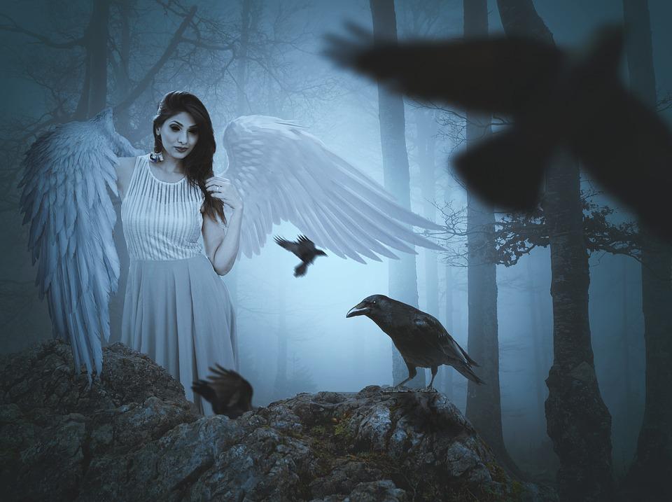 Setan gagak hitam misteri Pixabay.com