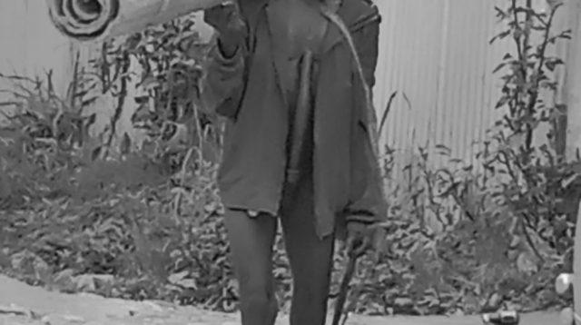 Foto berikut ini saya shoot tadi pagi, Rabu 26/05-2021 di depan rumah Alm. Herman Auwe (Wakil Bupati Dogiyai) di Moanemani - Dogiyai menggunakan HP Vivo Y30.